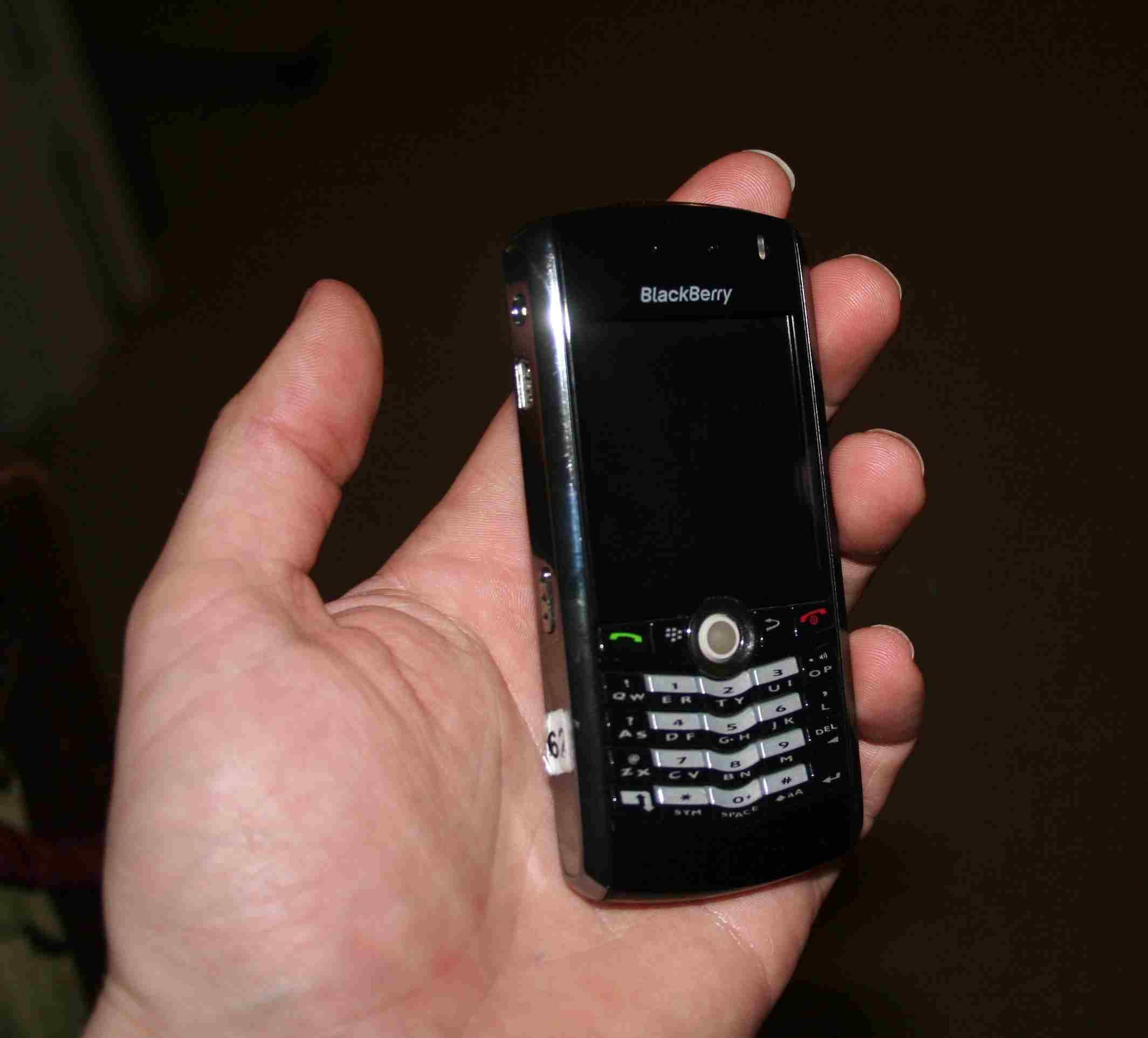 blackberry_pearl.jpg